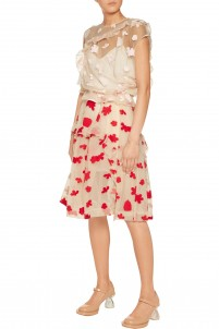 Embroidered cotton-blend tulle skirt