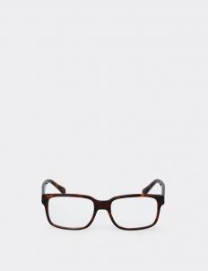 Bornea Optic Glasses (Deliuxe Set)