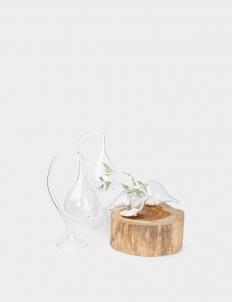 Seashell Glass Gift Bundle Set