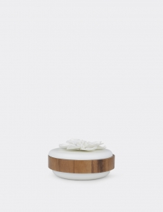 Conceal Cosmos Container - Large