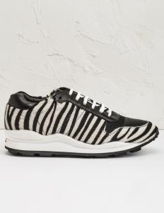 Black Multi Zebra Clssc OC Sneakers