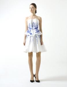Blue Rose Printed Flare Dress