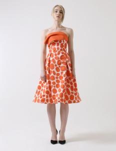 Print Molluca Dress