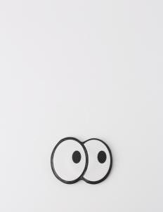 Eye Spy Magnetic Bits