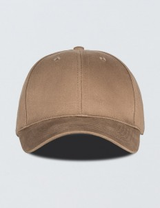 """Need Money"" Cap"