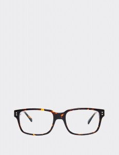 Tortoise Bornea Optical Glasses