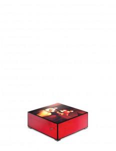 Accompaniment IV Rouge watch box