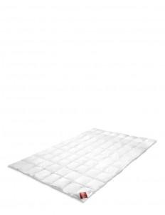 Summerlight goose down cotton cambric duvet - Queen size