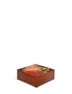 Safe Haven XVII accessory box