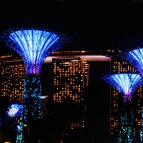 1-Day Pass Gardens by The Bay