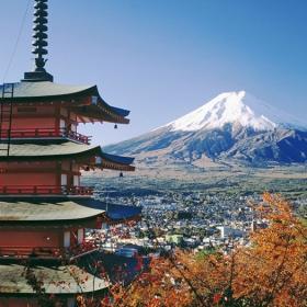 Mount Fuji & Hakone Tour