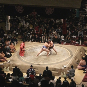 1-Day Sumo Tour in Tokyo