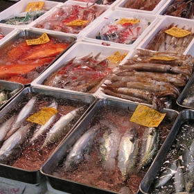 Explore, Eat and Experience: Tsukiji Fish Market Tour