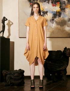 NFRT Brown Jiro Dress
