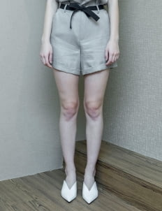 Day and Night Gray Louis Shorts