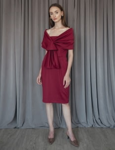 Cara Woman Divine Dress - Maroon