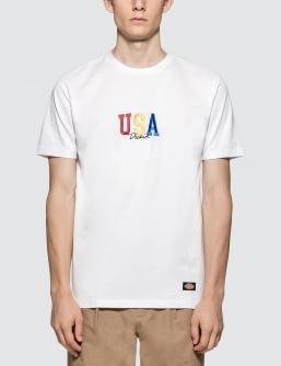 Dickies USA Tricolor S/S T-Shirt