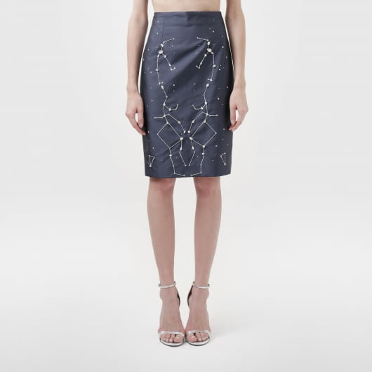 Michelle Worth Enceladus Skirt