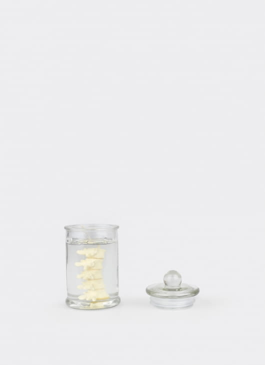 Dumbfounded Back Bone in Jar Candle