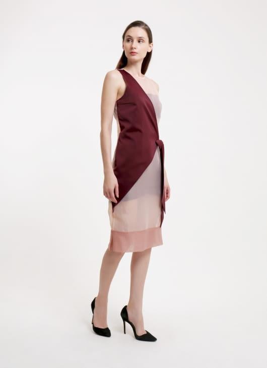 Reves Studio Nude & Burgundy Asymmetric Organza Dress