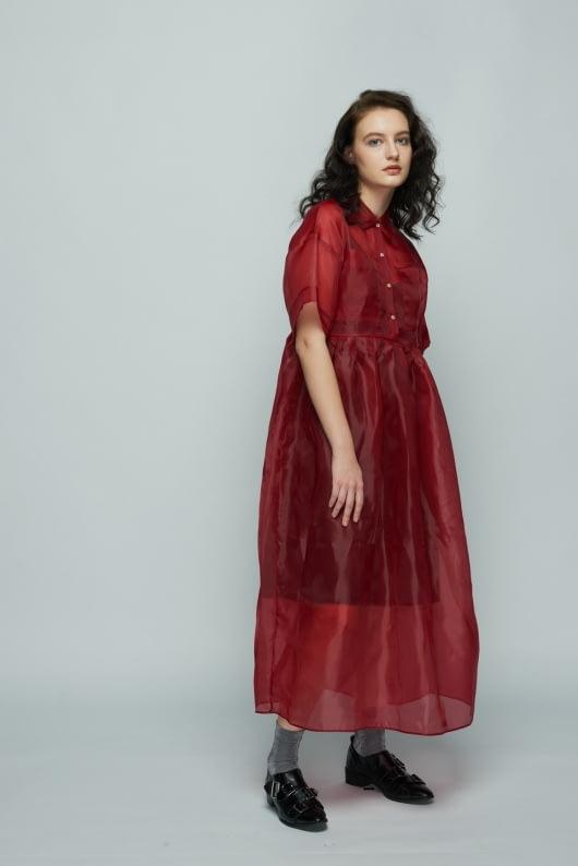 Shopatvelvet Maroon Fiction Dress