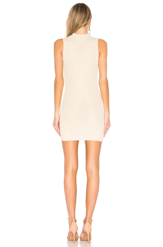 AYNI Leo Mini Dress