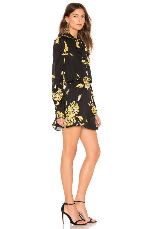 Joie Gyan Dress